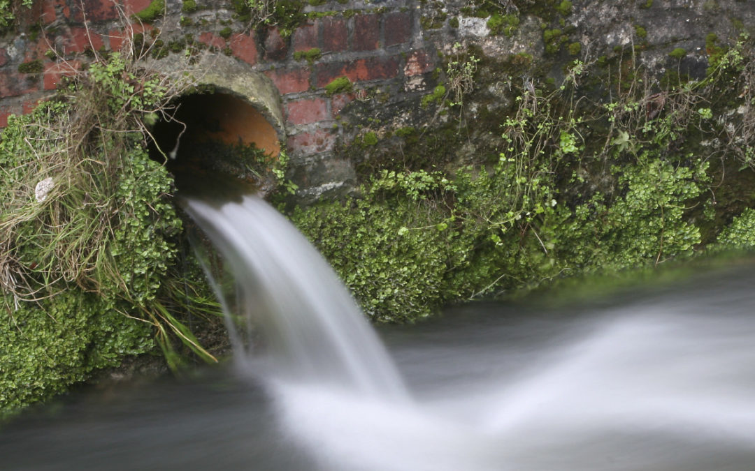 Supreme Court Finds Groundwater Discharges Can Be Regulated under Clean Water Act